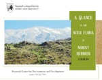 A GLANCE AT THE WILD FLORA OF MOUNT HERMON LEBANON - Beirut Arab University - Research Center for Environment and Development